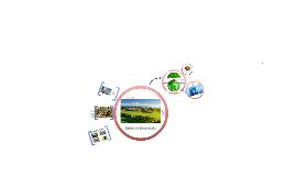 Copy of Ember és környezete