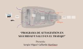 """""""PROGRAMA DE AUTOGESTION EN SEGURIDAD Y SALUD EN EL TRABAJO"""""""