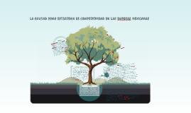 LA CALIDAD COMO ESTRATEGIA DE COMPETITIVIDAD EN LAS EMPRSAS