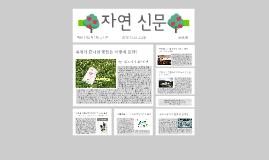 자연 신문