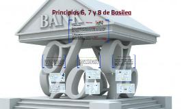 Principios 6, 7 y 8 de Basilea