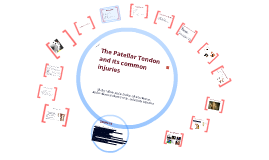 The Patellar Tendon and its Common Injuries