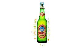 Copy of tsingtao beer