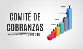 COMITÉ DE COBRANZAS JUNIO 2016