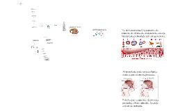 Distúrbios de proliferação, volume e diferenciação celular