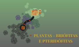 PLANTAS - BRIÓFITAS E PTERIDÓFITAS