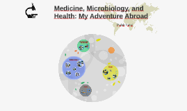 Medicine, Microbiology, and Health: My Adventure Abroad