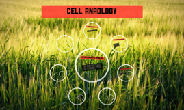 Cell anaology