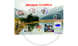 Montane Cordillera