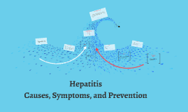 Kunkle- Hepatitis A