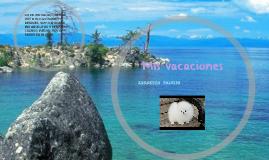 Copy of Mis vacaciones