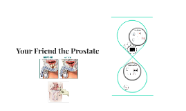 Your Friend the Prostate