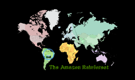 The Amazon Rainforest