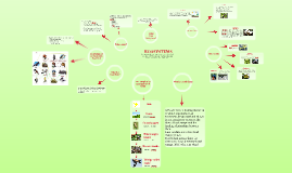 TGPS_ECOSYSTEMS- Australian food chains and food webs