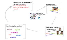 Internationale aktiviteter 2012-2013