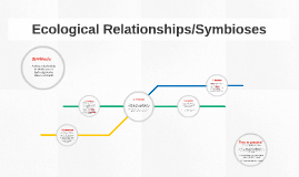 Copy of Ecological Relationships