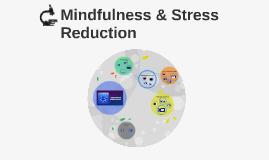 Mindfulness & Stress Reduction