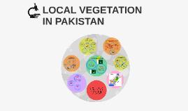 Copy of LOCAL VEGETATION IN PAKISTAN