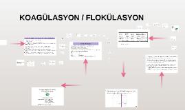 Copy of KOAGÜLASYON /  FLOKÜLASYON