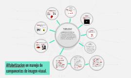 Alfabetizacion en manejo de componentes de imagen visual.