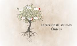 Copy of Dirección de Asuntos Étnicos