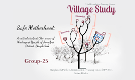 Village Study