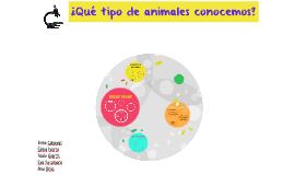 ¿Qué tipo de animales conocemos?