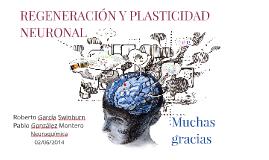 Regeneración y Plasticidad Neuronal