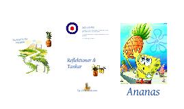 Projekt Ananas