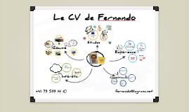 Le CV de Fernando