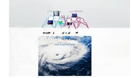 Hurricanes :)