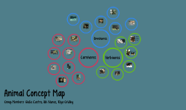 Animal Concept Map
