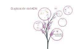Copy of Replicación del ADN