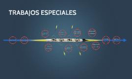 Copy of TRABAJOS ESPECIALES