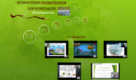 Ecosistemas Estrategicos grupo 358006_82
