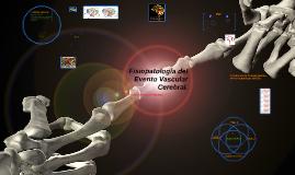 Fisiopatologia del ACV