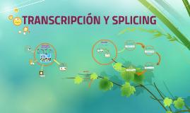 TRANSCRIPCIÓN Y SPLICING