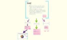 Presentación TMZ