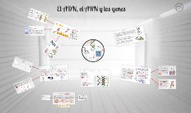Copy of El ADN, el ARN y los genes