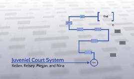 Juveniel Court System