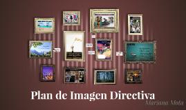 Plan de Imagen Directiva