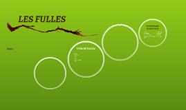 Copy of CLAU DICOTÒMICA DE LES FULLES