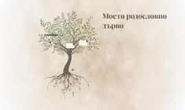 Моето родословно дърво