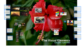 Chapter 3: The Visual Elements  part two