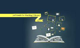 3rd Grade Co-Teaching: Literacy