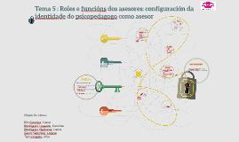 Tema 5 : Roles e funcións dos asesores: configuración da ide