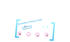 Information Process Cycle