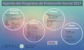 Agenda del Programa de Protección Social 2017