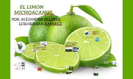 EL LIMON MICHOACANO