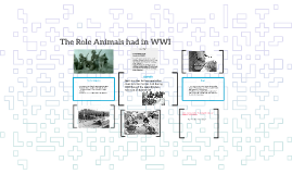 The Role Animals had in WWI